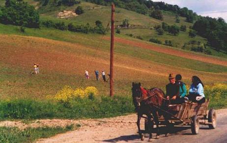 Un alto en el camino: las carreteras en Rumanía.